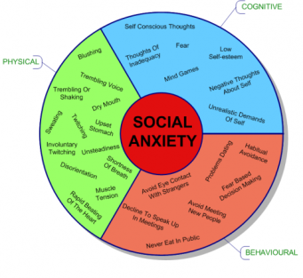 Social-Anxiety-Disorder-Symptoms-Pie1-e1314364830163