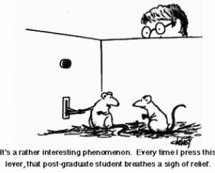 rat_cartoon