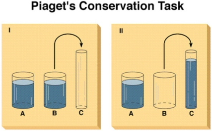 water-conservation-task
